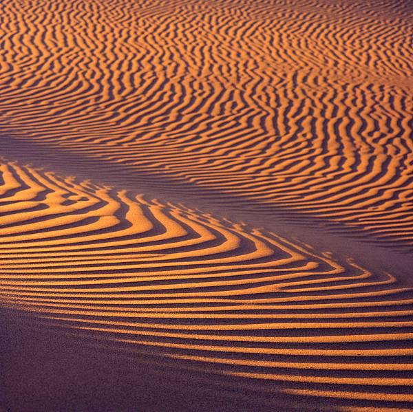 南北疆風景 103