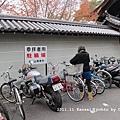 IMG_8622.JPG
