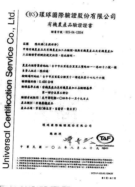 103.12.15豆芽菜有機正書