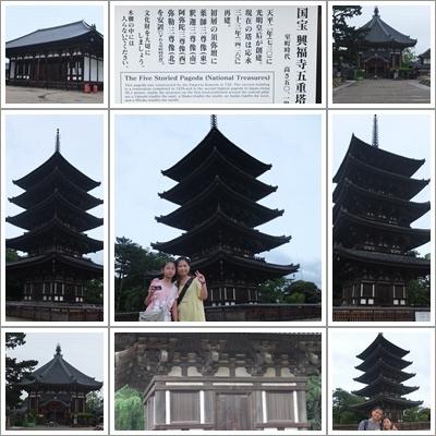 興福寺及五重塔.jpg