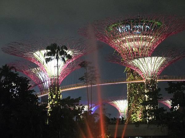 濱海灣超級樹
