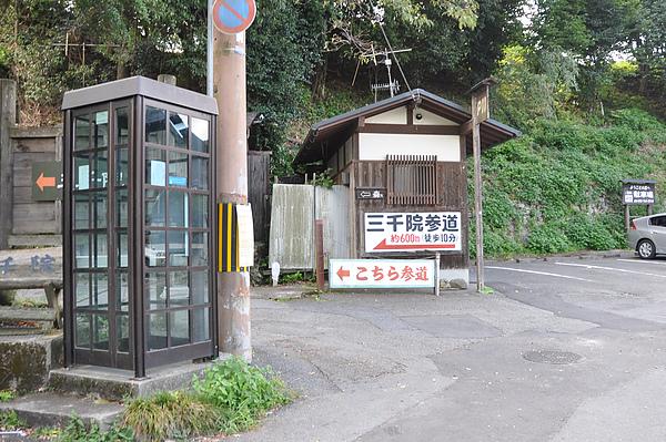990829_007.JPG