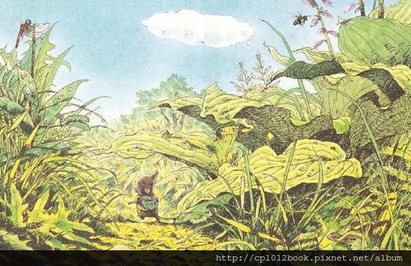 風的草原內頁圖 03