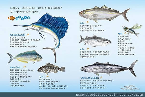印刷-魚市場內頁n11