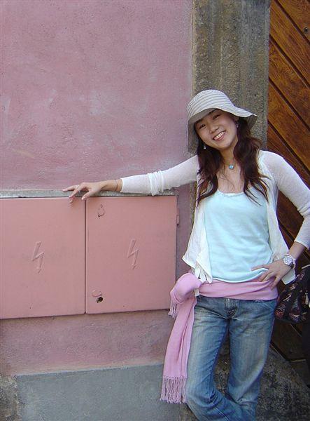 我愛這個城市...連變電箱也是粉紅色的啦..