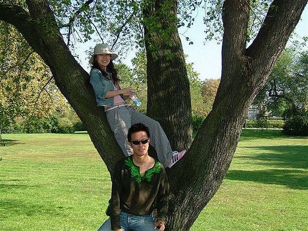悠閒爬樹樣子