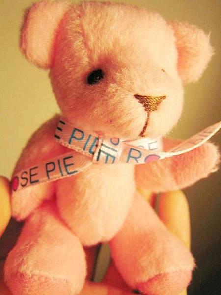 哈哈哈~又來一隻粉紅小小熊~