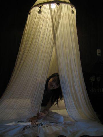 浪漫的要命的蚊帳...