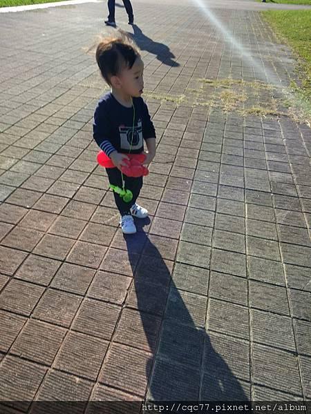 IMG_20161225_145652.jpg