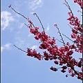 武陵-天空的顏色.jpg