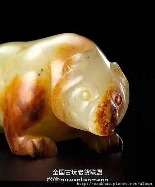 白玉熊 d.jpg