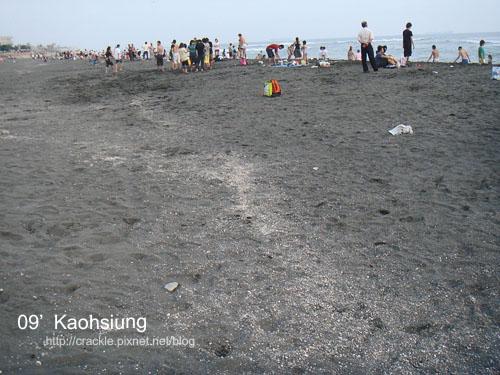 砂灘上白色那條都是貝殼
