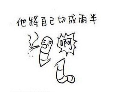 蚯蚓的再生能力01.jpg