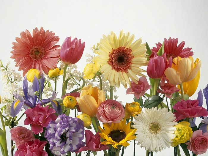 Springtime Arrangement.jpg