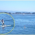 看到奇怪的人在衝浪板上拿槳?