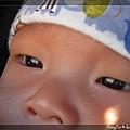 Q寶眼睛裡映著那座太陽拱橋