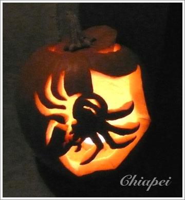 半陰半陽的蜘蛛雕刻