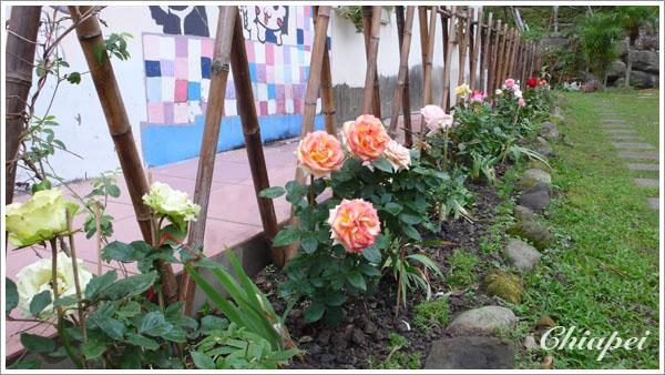 民宿名稱是『木玫瑰』
