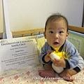 Q寶與他的獎狀