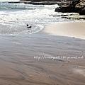 7/4 水流過沙灘的紋路很漂亮