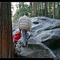 爸爸帶女兒爬大石頭