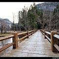 結霜的橋面