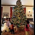 在大廳看耶誕樹