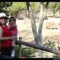 陳小牛正在比「大象」的長鼻子 :D
