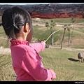 陳小牛正在對犀牛大叫「來喔!來吃草喔!」