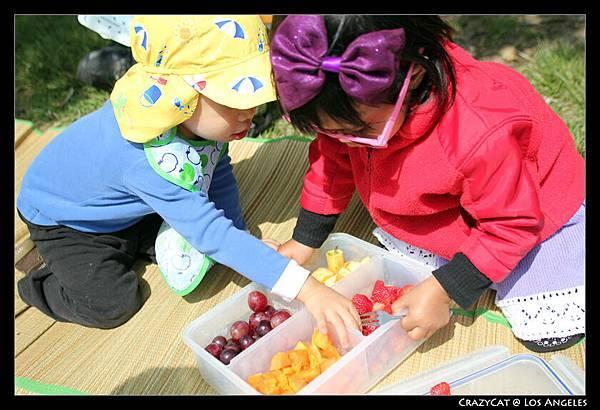 色彩繽紛的水果盒 :D