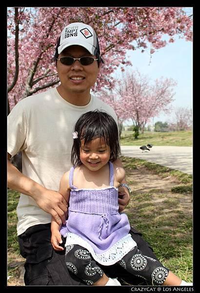 來到櫻花樹下照相