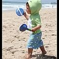 愛玩沙的Q寶來到沙灘好興奮