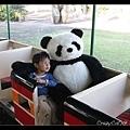 Q寶也和大貓熊合照