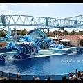 海豚表演的漂亮舞台
