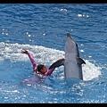 粉紅色姊姊與海豚跳舞