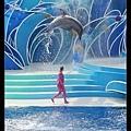 海豚躍出水面(跳得超高!!)