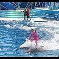 粉紅色姊姊也騎一下子海豚