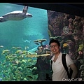 陳立人與海龜合照1