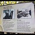 seamore 和 op otter 的介紹