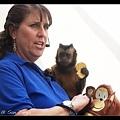 小猴子自己打開背包拿出餅干來吃