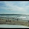 這個海灘似乎有很多岳納珊