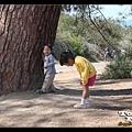 姊弟倆玩一二三木頭人,玩到笑到岔氣