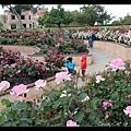 這裡有個玫瑰花園,我也是剛才發現,玫瑰盛開好漂亮