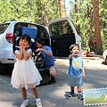 抵達巨杉林區(Sequoia)