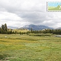 還是 Tuolumne Meadows
