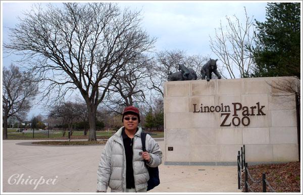 林肯公園的動物園(免費的)