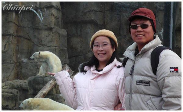 路人很高興地說:好棒的姿勢!大白熊剛好坐在你手上耶!