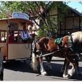 街上的觀光馬車