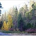 五顏六色的山林