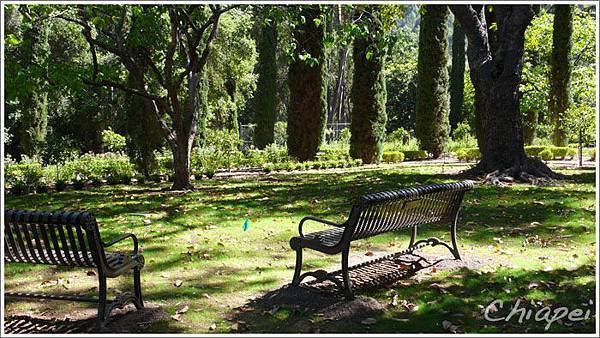5/1 我喜歡這樣悠閒的草地和長椅